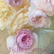 belle_10.jpg