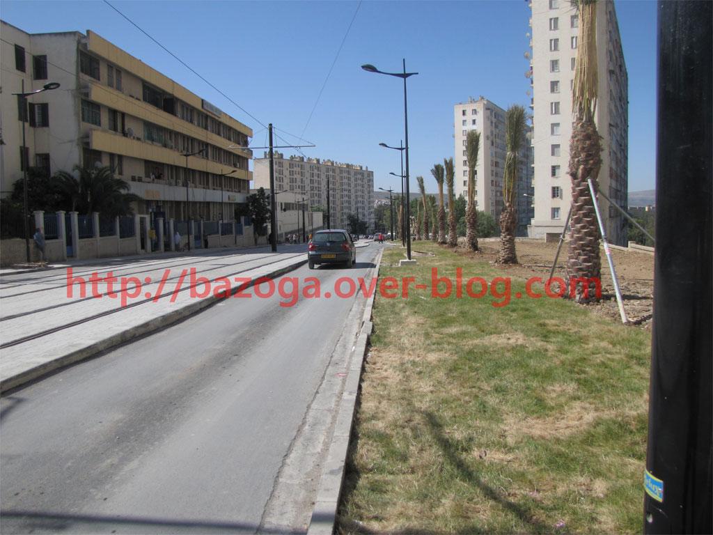 http://i78.servimg.com/u/f78/09/01/02/20/img_6512.jpg