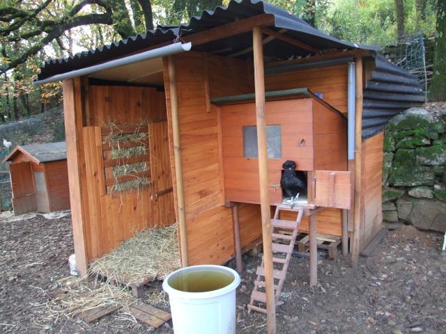 Le lama clavelito en photos for Interieur poulailler