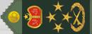 المشرف العام  فريق