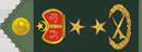 مراسل حربي  فريق التحرير