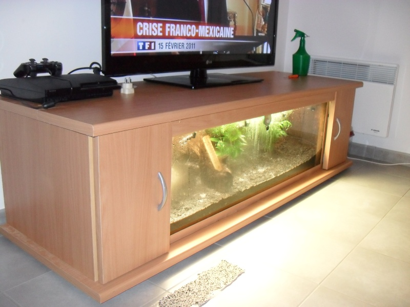 Meuble aquarium trigon for Aquarium meuble tv