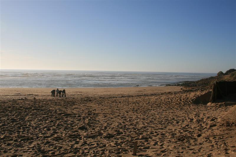 L 39 ete aux sables d 39 olonne le jour de l 39 hiver - Jour de l hiver ...