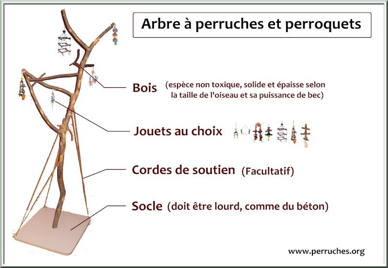 Comment construire un arbre perruches et perroquets - Detruire souche arbre rapidement ...