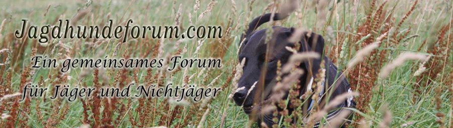 Jagdhundeforum.com ist jagdhundbegeistert!