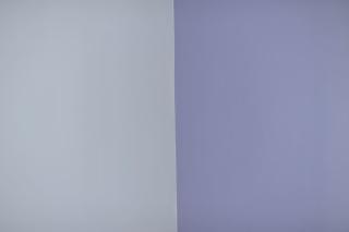 Le Classique Peinture Pour Chambre De B B Fille