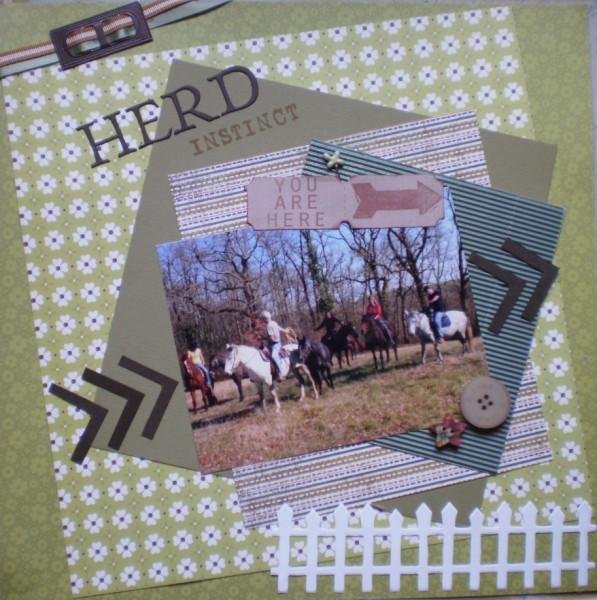 herd_i10.jpg