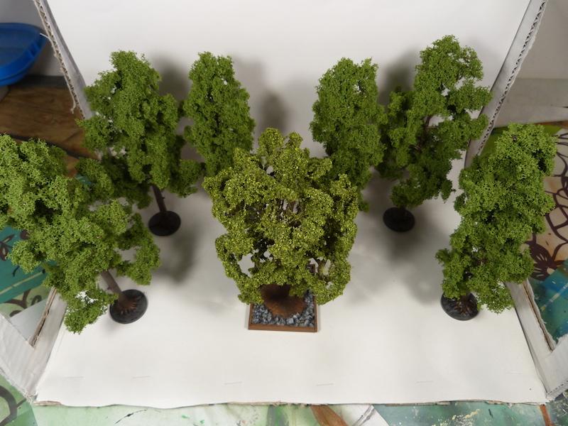 arbres10.jpg